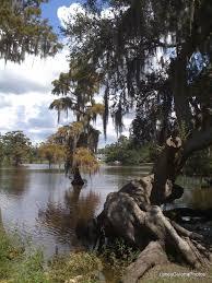 Pumpkin Patch Rv Park Hammond La by 92 Best Louisiana Images On Pinterest New Orleans Louisiana