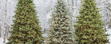 Artificial Layered Noble Fir Christmas Tree by Holiday Splendor The Christmas Tree Buying Guide Home Style