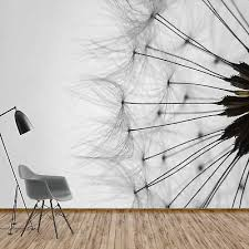 fototapete vlies pusteblume blumen natur schlafzimmer