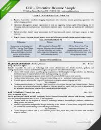 CIO Resume Sample Page 1