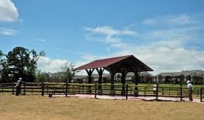 Pumpkin Patch Fayetteville Arkansas by 4 Dog Parks In Northwest Arkansas U2013 Re Max Real Estate Results