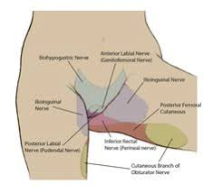 i am here to talk about my pelvic floor my hypertonic pelvic