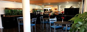Sdsu Dining Room Menu by Hotels In National City Ca Cassia Hotels San Diego Boutique
