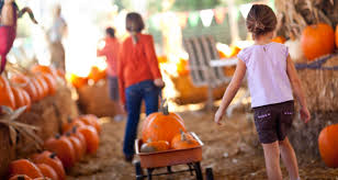 Best Pumpkin Patch Austin Texas by Fall Ing In Love With Central Texas Austin Foot And Ankle