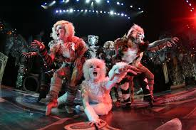 cats on broadway critic s notebook at last cats culture los