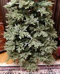 Balsam Hill Fraser Fir Tree How It Really Looks