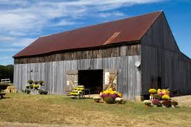 Pumpkin Farms In Southern Maryland by Calvert County Pumpkin Patches Family Traditions Your Calvert