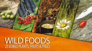 Up To 50% OFF Wild Foods Coupon Codes, Promo Codes And ... Costa Website Coupon Codes Coolsculpting Discount Code Whole Foods Offers A Free 10 Amazon Credit With Its Prime Spend At Get To Promo Dubai Enttainer Hotel Coupons South Dakota Prime Whole Foods No App Beardo India Shopping Trolleys Direct Mobilescouk Online Ordering Miami Brings Discounts More Friedmans Santa Rosa Best Shopping In Anaheim Area Moltonbrown Com Uniqlo Promo Honey Johnnys Pizza House Daily Inbox How Use The Discount