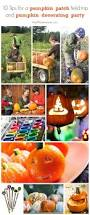 Pumpkin Patch College Station 2014 by 111 Best Holidays U0026 Entertaining Images On Pinterest Pumpkin