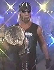 Halloween Havoc 1997 Hogan Fan by Starrcade 1996 Wikipedia