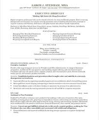 Professional Profile Resume Examples Assistant Vice President Executive Sample Is