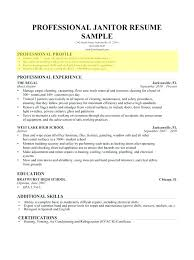 Professional Profile For Resume Skilled Examples Template