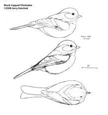 bird patterns for wood carving plans diy free download stand alone