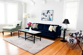 Houzz Living Room Sofas by Blue Couches Living Rooms Interior Design