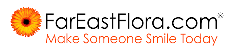 Get 15% Off: FarEastFlora.com Discount Codes October 2019 ... Ibm Tiree Discounts Hertz Clothing Stores With Military Porter Counter Height Bar Stool Ashley Fniture Homestore 20 Off Function Of Beauty Coupons Promo Codes Savingdoor Netaportercom 500 Blue Nile Coupon Code Enjoyment Tasure Coast Book By Savearound Issuu 10 Autozone Deals 2019 Groupon 50 Best Advent Calendars Ldon Evening Standard Netaporter Home Facebook October Sale 40 Cashback