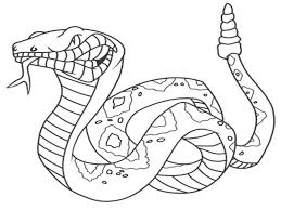 Realistic Coloring Pages Of Snakes Id 19195