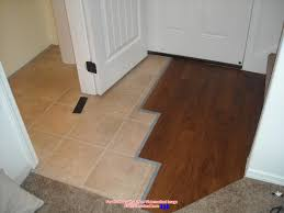 Floating Floor Underlayment Basement by Flooring Great Vinyl Plank Flooring For Home Flooring Idea