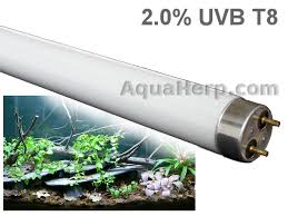 reptile uvb 2 0 lighting 18w t8 from web shop