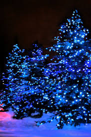 Blinking Christmas Tree Lights by Best 25 Blue Christmas Lights Ideas On Pinterest Blue Christmas