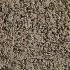 Trafficmaster Carpet Tiles Home Depot by Beige Cream Trafficmaster Twist Carpet Samples Carpet