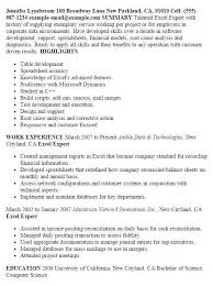 Resume Format Excel Unique Cv Examples Lovely 0d