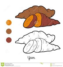 Coloring Book For Children Fruits And Vegetables Yam Stock