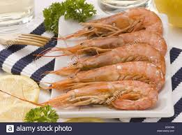 cuisine plancha cuisine gambas a la plancha grilled shrimps stock photo