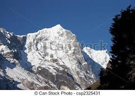 Tree And Snow Mountain Cliff Himalaya Nepal Stock Photo