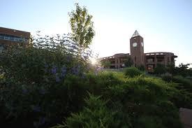 Christmas Tree Permit Colorado Springs 2014 by Uccs Home University Of Colorado Colorado Springs
