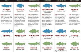 Patios Little River Sc Entertainment Calendar by 2017 West Virginia Fishing Forecast Game U0026 Fish