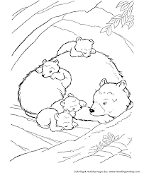Er Animal Coloring Book Wild Pages Inside The Bear Den Page And