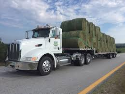 Hay For Sale Hay For Sale In Boon Michigan Boonville Map Outstanding Dreams Alpaca Farm Phil Liske Straw Richs Cnection Peterbilt 379 At Truckin Kids 2013 Youtube Bruckners Bruckner Truck Sales Lorry Stock Photos Images Alamy Mitsubishi Raider Wikipedia For Lubbock Tx Freightliner Western Star Barmedman Motors Cars Sale In Riverina New South Wales On Economy Mfg Dennis Farms Equipment Auction The Wendt Group Inc Land And