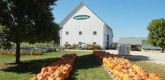 Kent Ohio Pumpkin Patches by 9 Pumpkin Patches To Visit Near Columbus This Fall Interactive Map