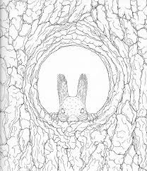 Harmony Of Nature Adult Coloring Book Pg 18