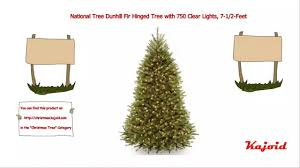Dunhill Fir Christmas Trees by National Tree Dunhill Fir Hinged Tree With 750 Clear Lights 7 1 2