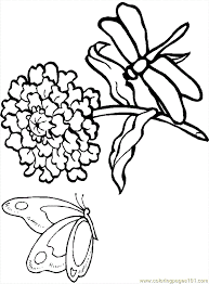 Flower Outline Printable 473372