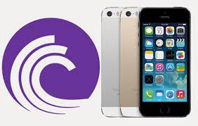How to Download Torrents on iPhone iPad Without