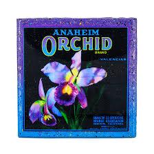 stella divina handmade coaster anaheim orchid brand vintage