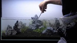 Setting Up Nature Aquarium Aquascape, Iwagumi 6A - YouTube How To Set Up An African Cichlid Tank Step By Guide Youtube Aquascaping The Art Of The Planted Aquarium 2013 Nano Pt1 Best 25 Ideas On Pinterest Httpwwwrebellcomimagesaquascaping 430 Best Freshwater Aqua Scape Images Aquascape Equipment Setup Ideas Cool Up 17 About Fish Process 4ft Cave Ridgeline Aquascape A Planted Tank Hidden Forest New Directly After Setting When Dreams Come True
