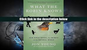 What The Robin Knows How Birds Reveal Secrets Of Natural World DOWNLOADONLINE
