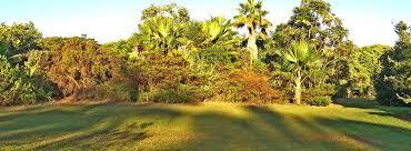 Hawaii Botanical Gardens