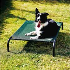 coolaroo elevated pet bed with breathable fabric medium 42 x
