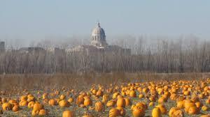 Pumpkin Patch Columbia Sc 2015 by Find Corn Mazes In Jefferson City Missouri Fischer Farms Pumpkin