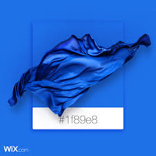Color Palette Inspiration Ocean Blue 1f89e8 Color
