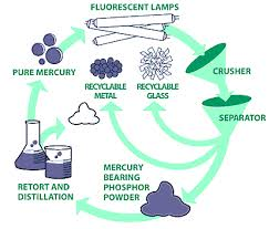 fluorescent bulb recycling reduce carbon footprint