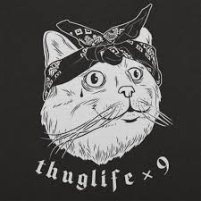 thug cat thug cat times nine t shirt 6 dollar shirts