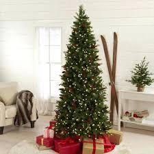 Skinny Pre Lit Christmas Trees Foot Tall Cone Berry Tree Small