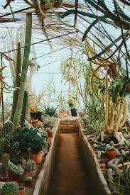 Moorten Botanical Garden — Seeking Chelle