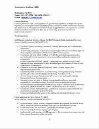 Resume Summary Examples Quality Assurance At Sample Ideasrhcheapjordanretrosus S Manager Lead Example With Banking Rhthomasbosschercom