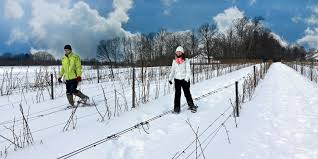 Jolly Pumpkin Brewery Hyde Park by Snowshoe On A Wine And Brew Trail Chicago Magazine January 2016